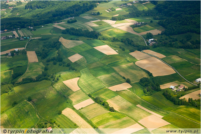 Rolniczy krajobraz okolic Braciejowej